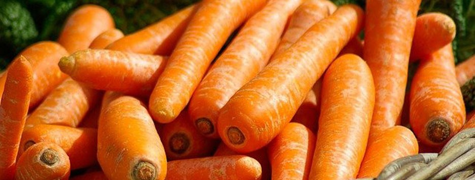 hortalizas-vegetables-candido-slider