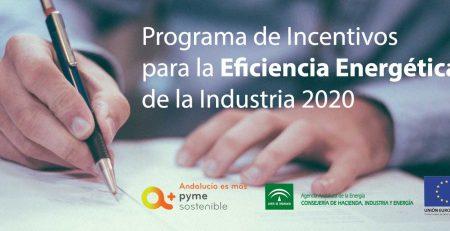 Incentivos Eficiencia Energética 2020